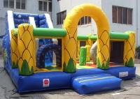 Marine Inflatable Slide