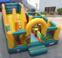 Safari slide inflatable
